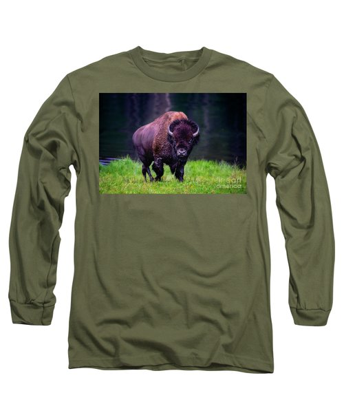 Bison Of Yellowstone Long Sleeve T-Shirt by Jim  Hatch