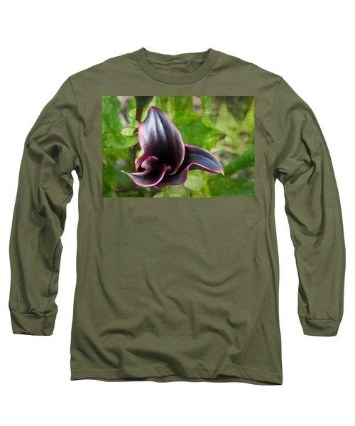 Black Beauty Long Sleeve T-Shirt