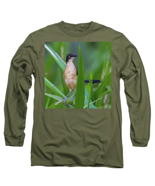 Black-capped Donacobius Long Sleeve T-Shirt