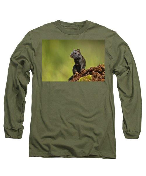 Black Chipmunk On Log Long Sleeve T-Shirt