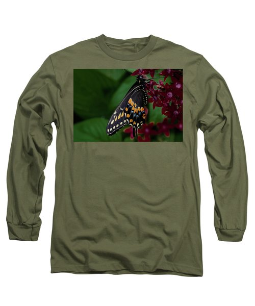 Long Sleeve T-Shirt featuring the photograph Black Swallowtail Butterfly by Jay Stockhaus