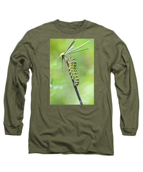 Black Swallowtail Caterpillar Long Sleeve T-Shirt by Debbie Green