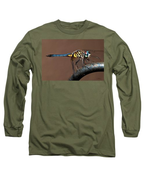 Blue And Gold Dragonfly Long Sleeve T-Shirt by Christopher Holmes