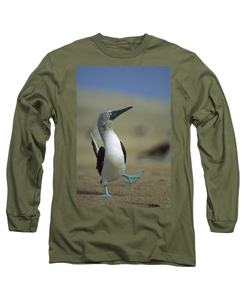 Blue-footed Booby Sula Nebouxii Long Sleeve T-Shirt by Tui De Roy