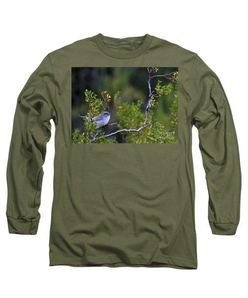 Blue-gray Gnatcatcher  Long Sleeve T-Shirt