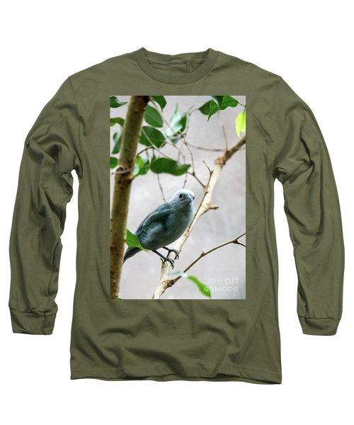 Blue-grey Tanager 2 Long Sleeve T-Shirt