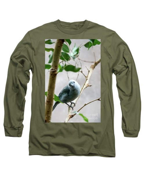 Blue-grey Tanager Long Sleeve T-Shirt