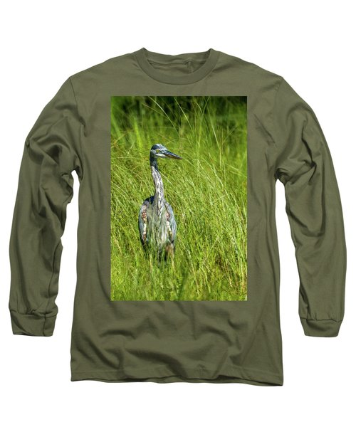 Long Sleeve T-Shirt featuring the photograph Blue Heron In A Marsh by Paul Freidlund