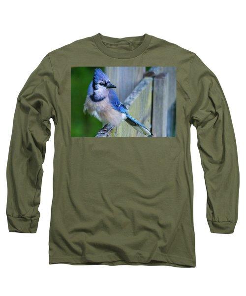 Blue Jay Fluffed Long Sleeve T-Shirt