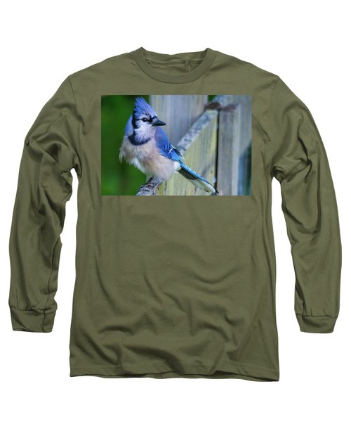 Blue Jay Fluffed Long Sleeve T-Shirt