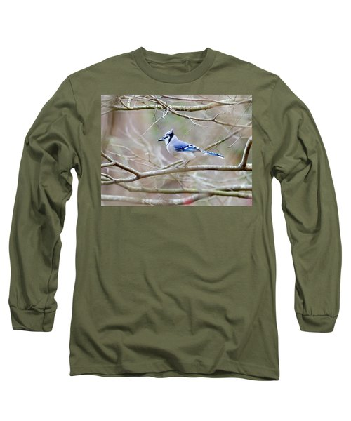 Long Sleeve T-Shirt featuring the photograph Blue Jay by George Randy Bass