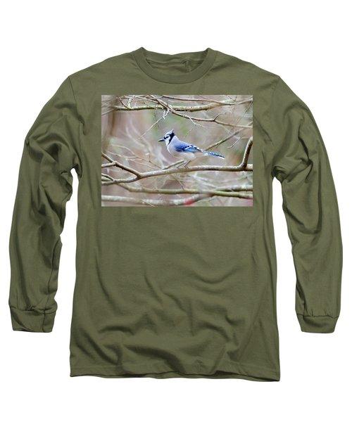 Blue Jay Long Sleeve T-Shirt by George Randy Bass