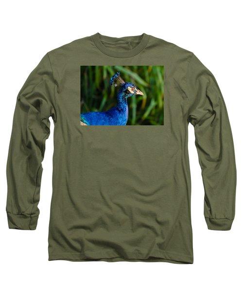 Blue Peacock Long Sleeve T-Shirt by Daniel Precht