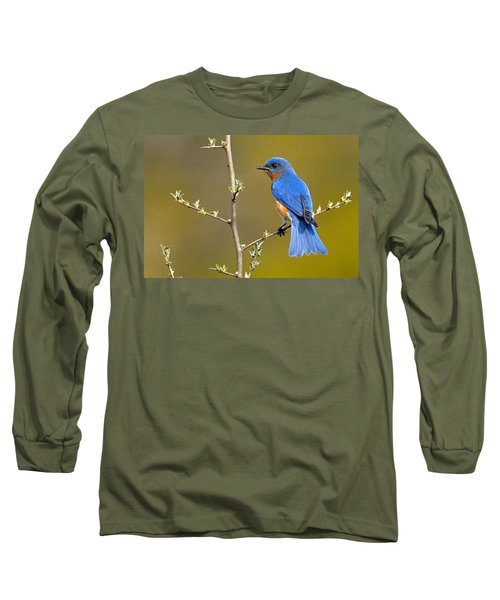 Bluebird Bliss Long Sleeve T-Shirt