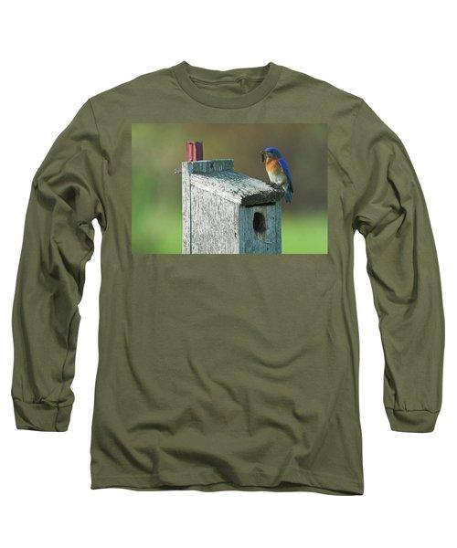 Long Sleeve T-Shirt featuring the photograph Bluebird by Steve Stuller