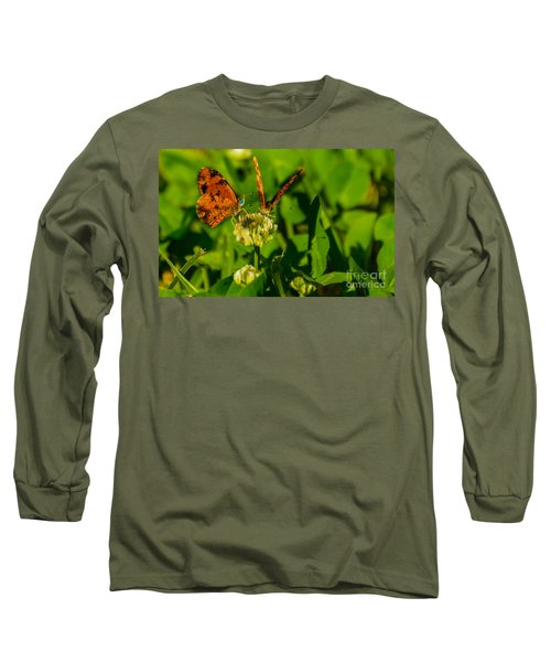 Bluehead Butterfly Long Sleeve T-Shirt