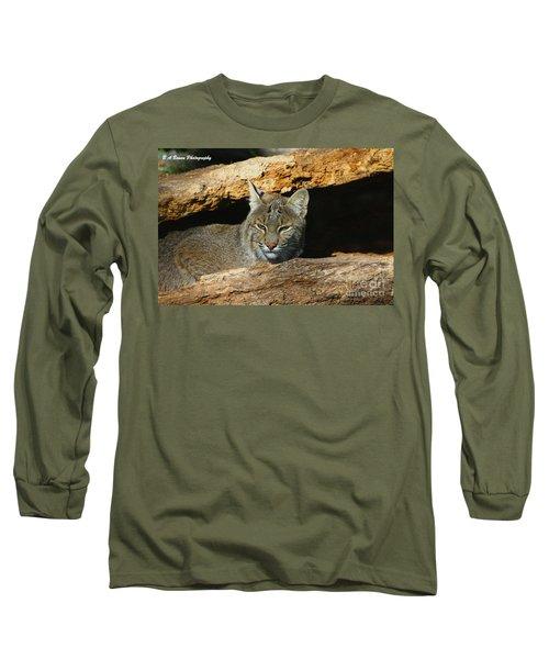 Bobcat Hiding In A Log Long Sleeve T-Shirt