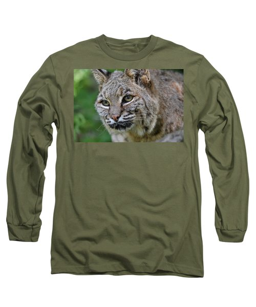 Bobcat In The Trees Long Sleeve T-Shirt