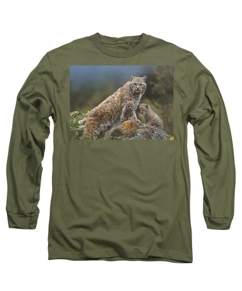 Bobcat Mother And Kittens North America Long Sleeve T-Shirt