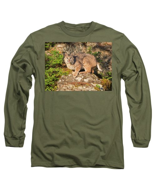 Bobcat On Rock With Tongue Out Long Sleeve T-Shirt