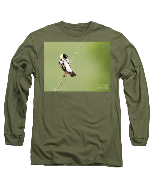 Long Sleeve T-Shirt featuring the photograph Bobolink Looking At You by Ricky L Jones