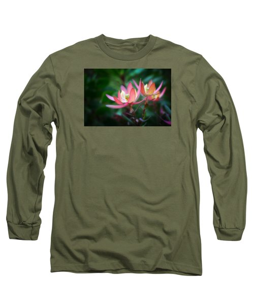 Botanic Garden Of Wales 1 Long Sleeve T-Shirt