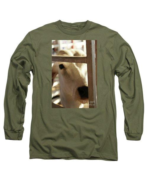 Brahma Love - 2 Long Sleeve T-Shirt by Linda Shafer