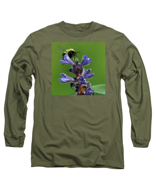 Long Sleeve T-Shirt featuring the photograph Bumble Bee Breakfast by Glenn Gordon