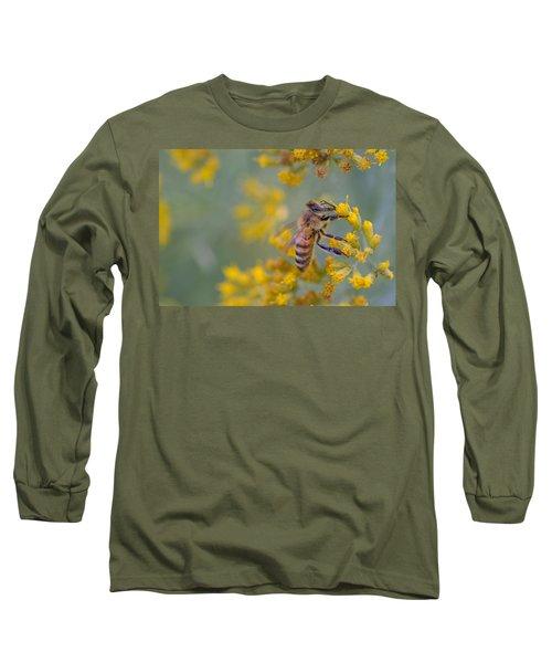 Bright Eyed Bee Long Sleeve T-Shirt by Janet Rockburn