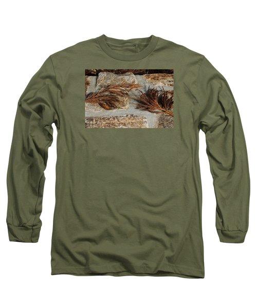 Bronze Symmetry Long Sleeve T-Shirt by Deborah  Crew-Johnson