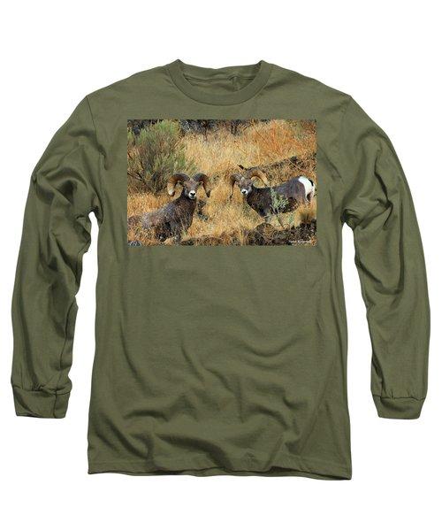 Brothers Long Sleeve T-Shirt by Steve Warnstaff