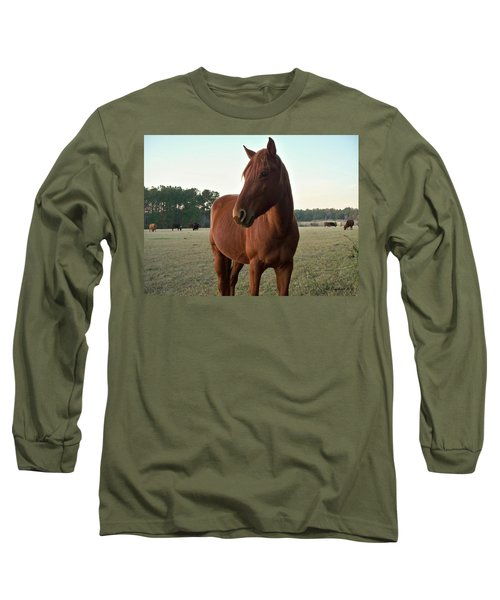 Long Sleeve T-Shirt featuring the photograph Brown Beauty by Betty Northcutt