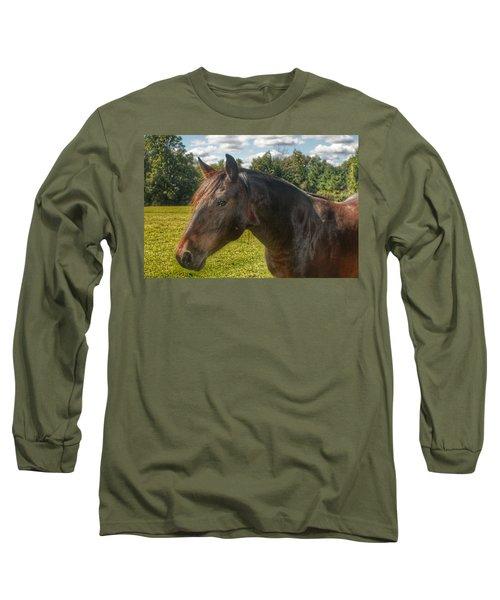 1001 - Brown Beauty I  Long Sleeve T-Shirt