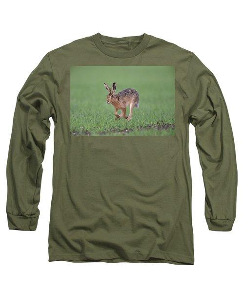 Brown Hare Running Long Sleeve T-Shirt