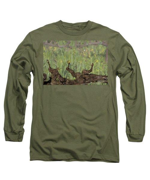 Budbreak In Carneros Long Sleeve T-Shirt
