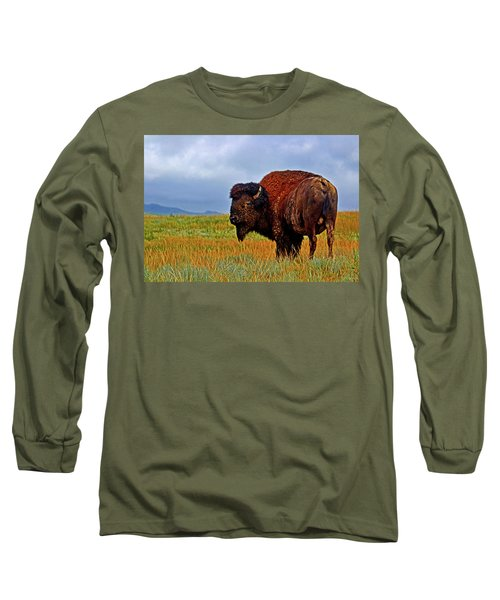 Long Sleeve T-Shirt featuring the photograph Buffalo 006 by George Bostian