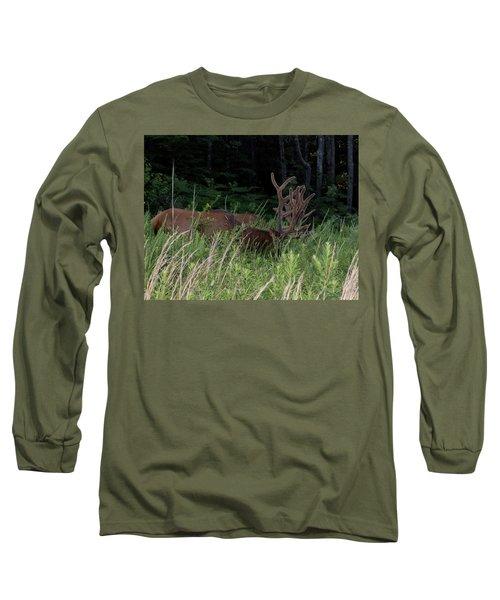 Bull Elk Grazing Long Sleeve T-Shirt