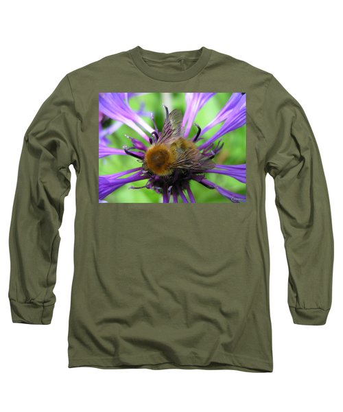 Bumblebee In Blue Long Sleeve T-Shirt