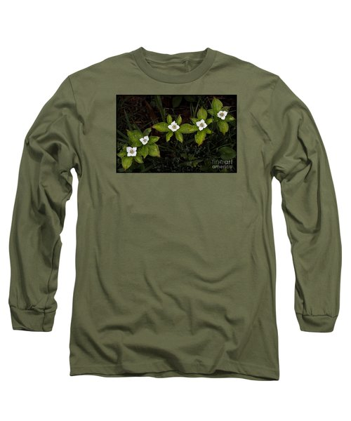 Bunchberry Flowers Long Sleeve T-Shirt