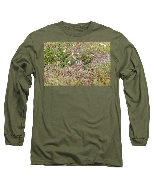 Burrowing Owl Outside His Home Long Sleeve T-Shirt