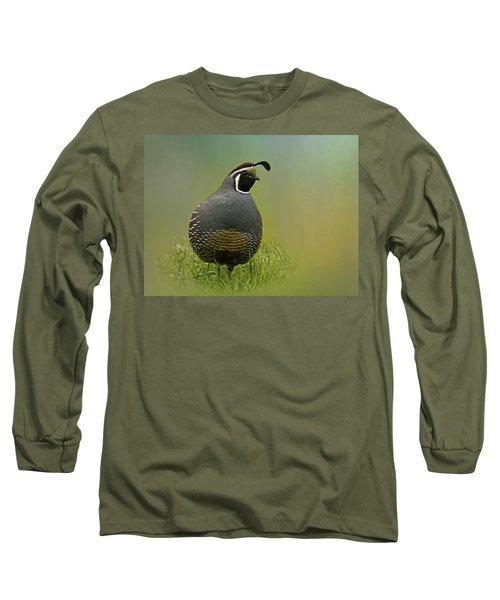 California Quail - 365-42 Long Sleeve T-Shirt by Inge Riis McDonald