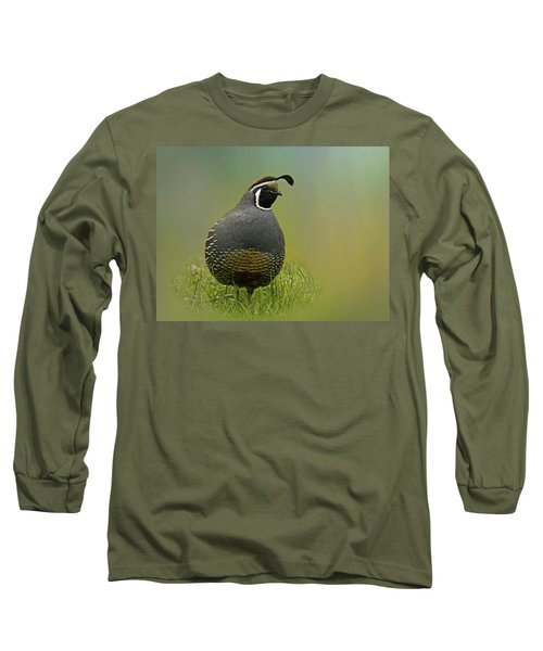 California Quail - 365-42 Long Sleeve T-Shirt