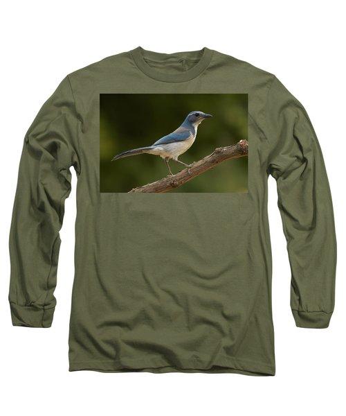 California Scrub Jay Long Sleeve T-Shirt by Doug Herr