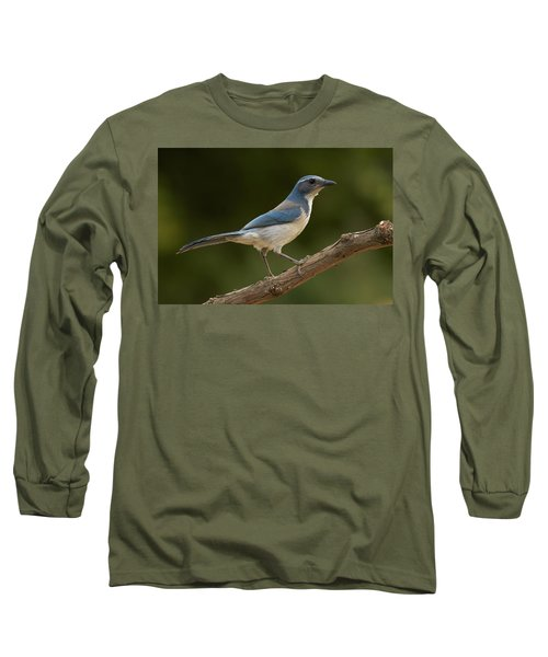 California Scrub Jay Long Sleeve T-Shirt