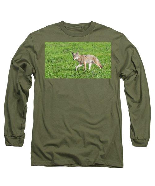 California Walk  Long Sleeve T-Shirt