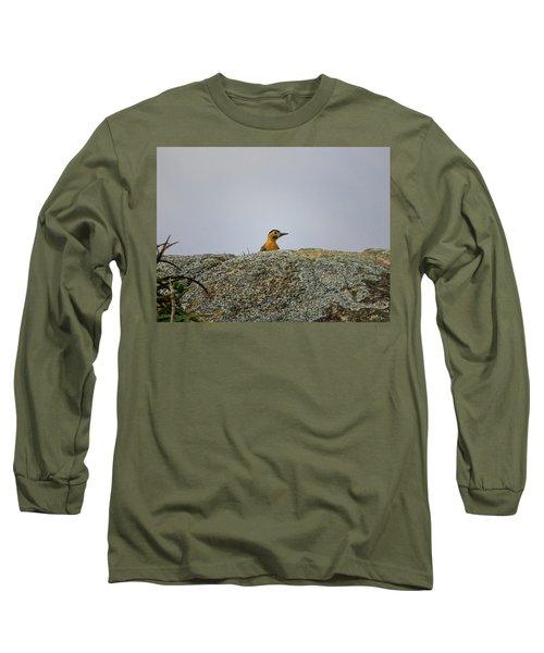 Campo Flicker Long Sleeve T-Shirt