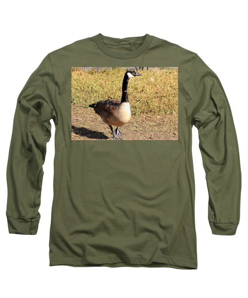Long Sleeve T-Shirt featuring the photograph Canada Goose On A Stroll by Sheila Brown