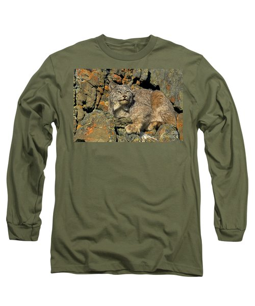 Long Sleeve T-Shirt featuring the photograph Canadian Lynx On Lichen-covered Cliff Endangered Species by Dave Welling