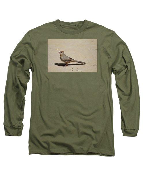 Canyon Towhee Begs Long Sleeve T-Shirt