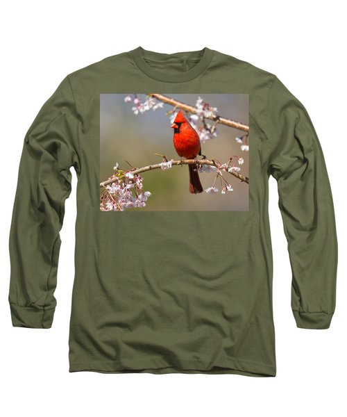 Long Sleeve T-Shirt featuring the photograph Cardinal In Cherry by Angel Cher